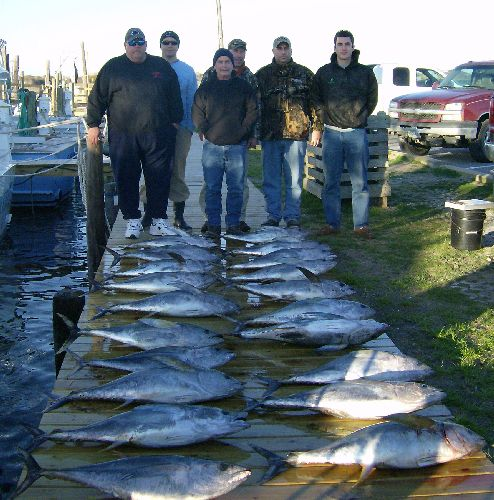 Fishing Report 1 28 12 Oregon Inlet Fishing Center
