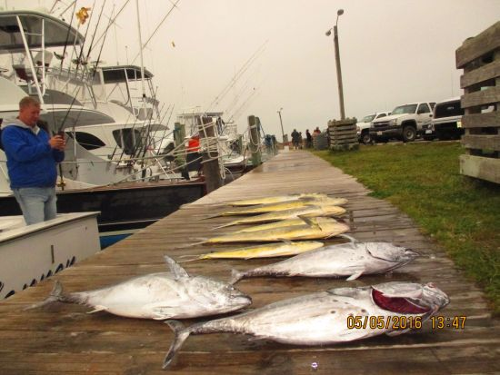 Fishing Report 05 05 16 Oregon Inlet Fishing Center