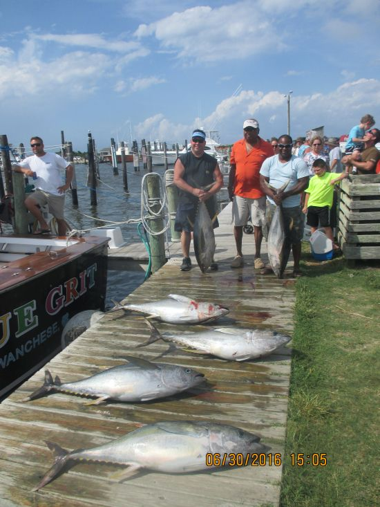 Fishing report 06 30 16 oregon inlet fishing center for Oregon inlet fishing center fishing report