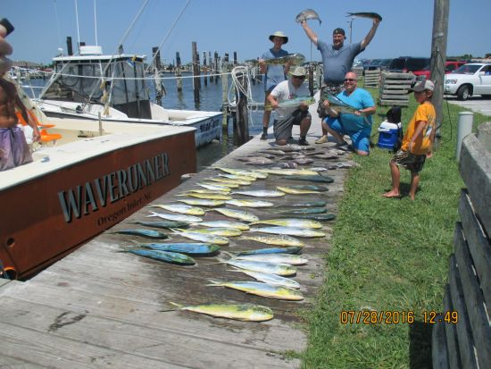 Fishing report 07 28 16 oregon inlet fishing center for Oregon inlet fishing center fishing report
