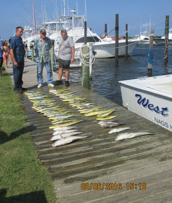 Fishing report 08 06 16 oregon inlet fishing center for Fishing report oregon