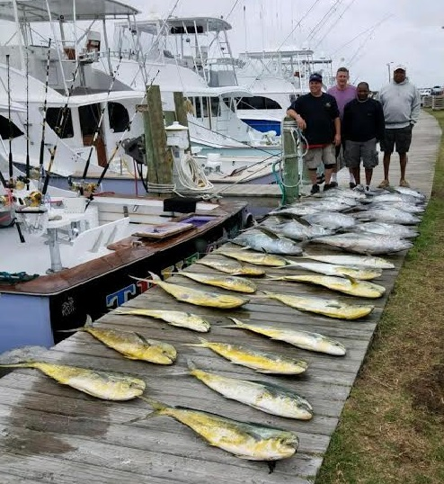 Fishing Report 06 07 17 Oregon Inlet Fishing Center