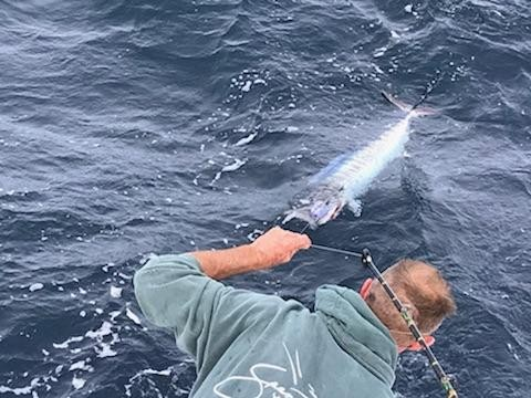 Gettin' It Done on Tuna Fever!!